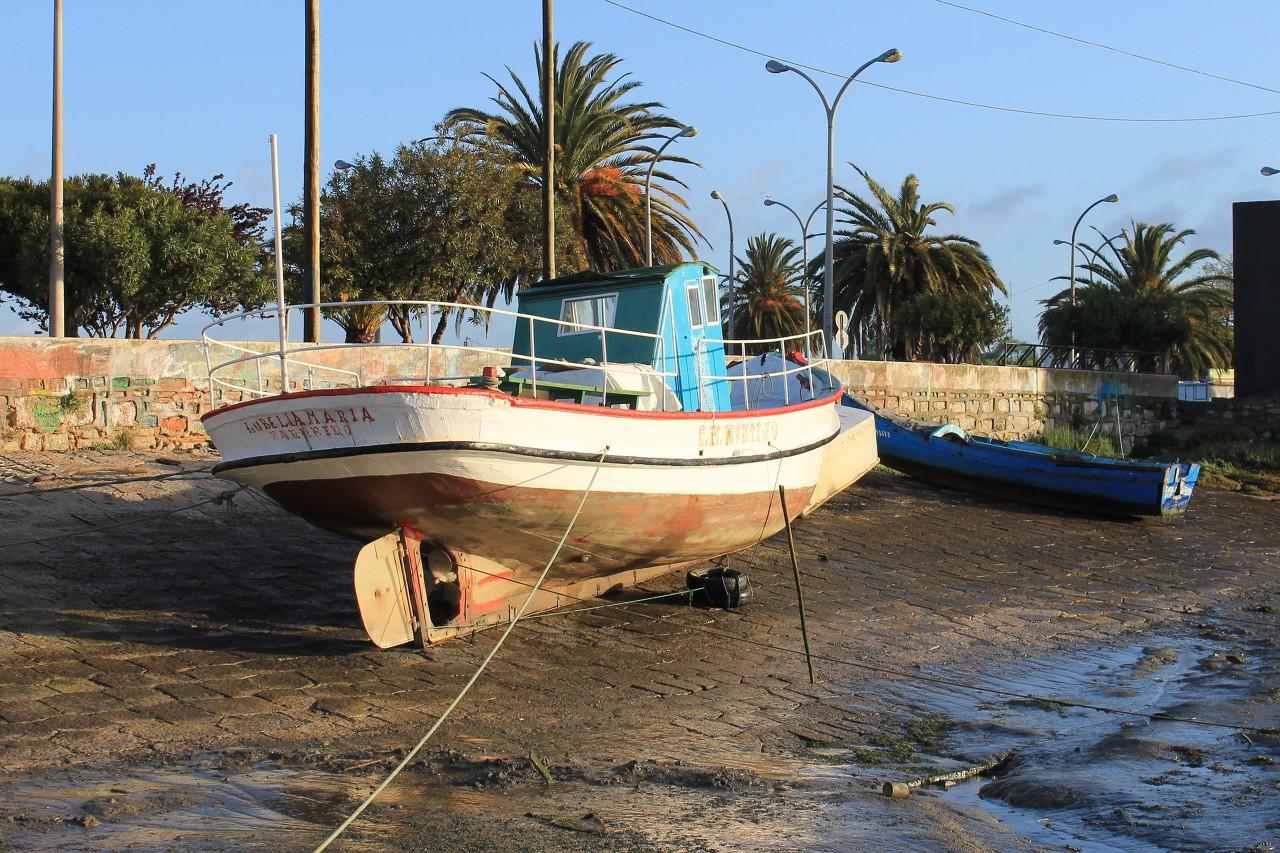 Low tide in Montijo
