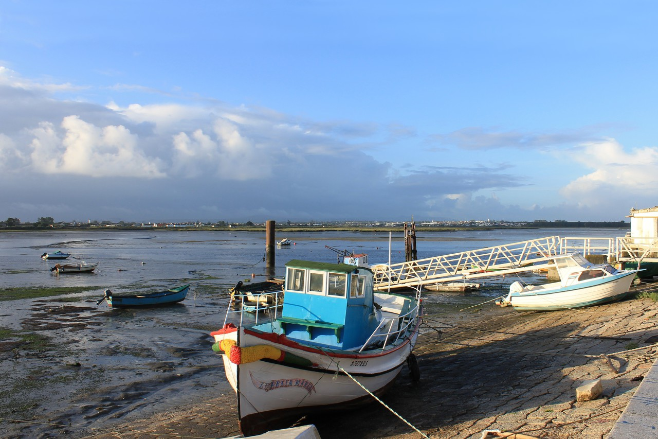 Montijo, low tide