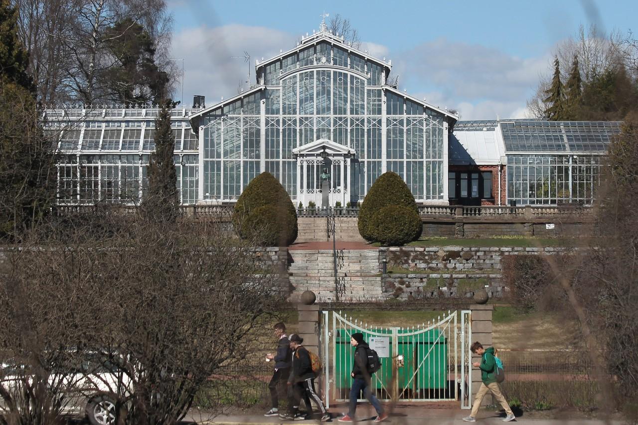 Helsinki. City greenhouse and winter garden